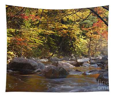 Swift River - White Mountains New Hampshire Usa Tapestry