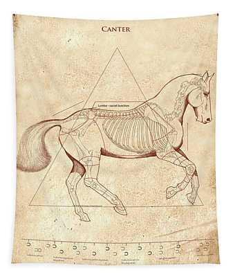 The Horse's Canter Revealed Tapestry
