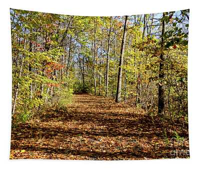 The Outlet Trail Tapestry