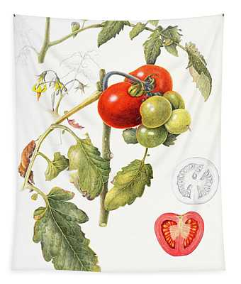Tomatoes Tapestry