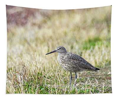 Willet Tapestry