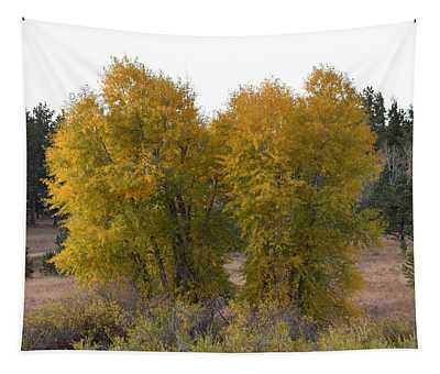 Aspen Trees In The Fall Co Tapestry