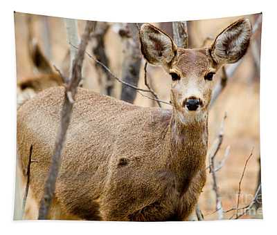 Mule Deer In The Pike National Forest Tapestry