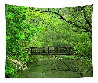 Jacobsburg State Park Pa Tapestry