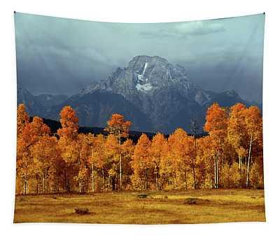 1m9235 Mt. Moran In Autumn Tapestry