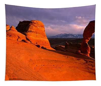 Arches National Park, Utah, Usa Tapestry