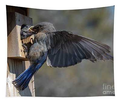 Beak To Beak Tapestry