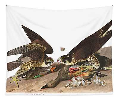 Great Footed Hawk Tapestry