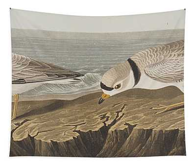 Piping Plover Tapestry