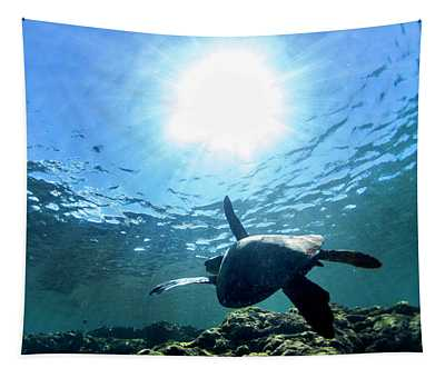 Turtles View Tapestry