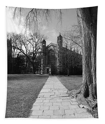 University Of Michigan Law Quad Tapestry