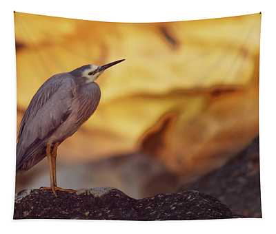 White-faced Heron At The Beach Tapestry