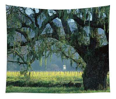 2b6319 Mustard In The Oaks Sonoma Ca Tapestry