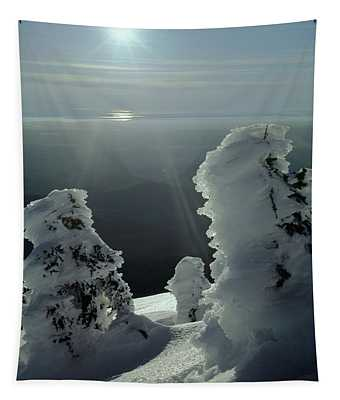 2m4415 A Ice Covered Trees Over Puget Sound Tapestry