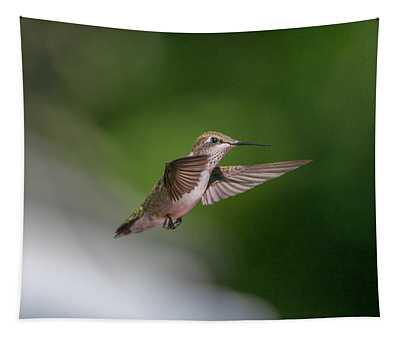 Female Ruby Throated Hummingbird Tapestry