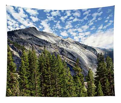 Yosemite National Park Tapestry