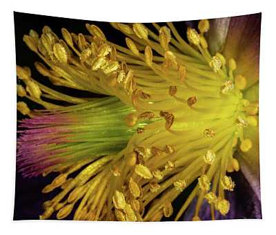 Purple And Yellow Tapestry