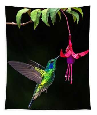 Green Violetear Colibri Thalassinus Tapestry