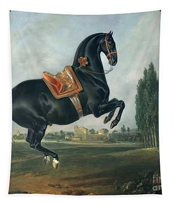 A Black Horse Performing The Courbette Tapestry