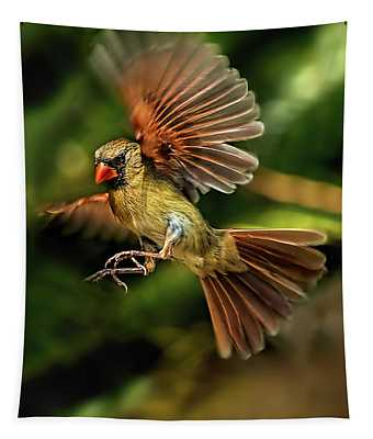 A Cardinal Approaches Tapestry