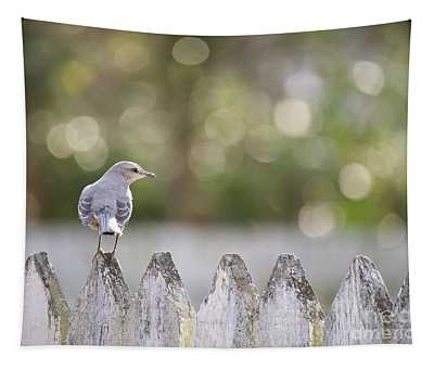 A Mockingbird In Colonial Williamsburg Tapestry
