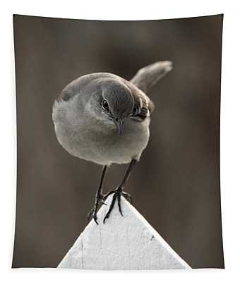 A Northern Mockingbird Tapestry