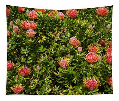 A Passel Of Protea Tapestry