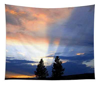 A Riveting Sky Tapestry
