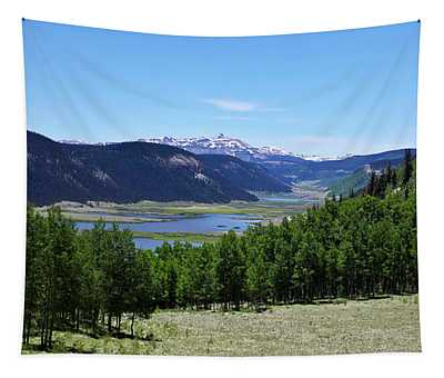 A Scenic View Of The Headwaters Of The Rio Grande River Tapestry