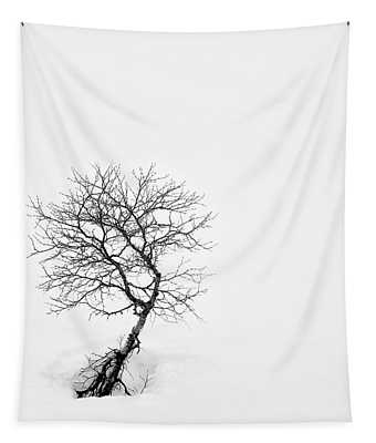 A Simple Tree Tapestry