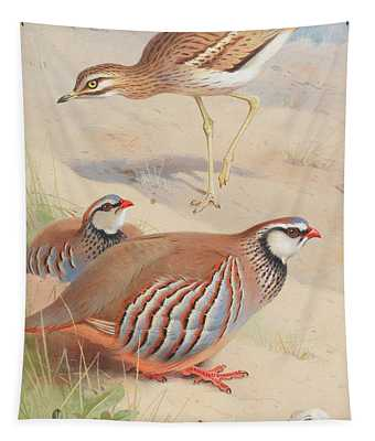A Stone Curlew And A Pair Of French Partridge Tapestry