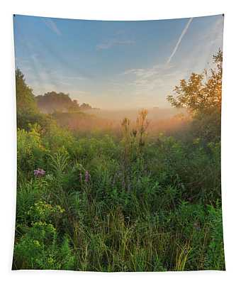 A Summer Morning 2016 Square Tapestry