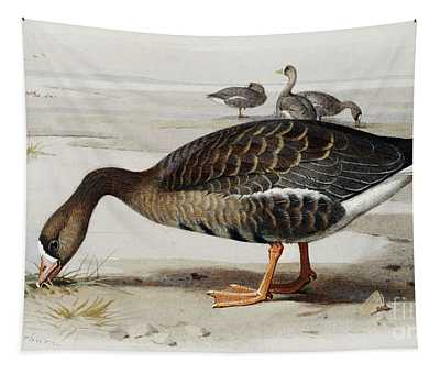 A White Fronted Goose Tapestry