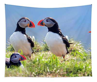 A World Of Puffins Tapestry