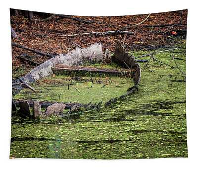 Abandoned Boat Tapestry