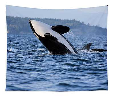 Absolutely Free - Whale Art Tapestry