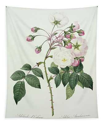 Adelia Aurelianensis Tapestry