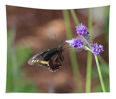 Admiral Butterfly Tapestry