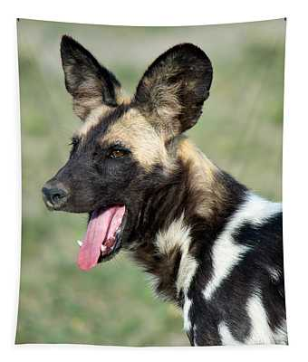 African Wild Dog Lycaon Pictus, Tanzania Tapestry