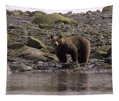 Alaskan Brown Bear Dining On Mollusks Tapestry