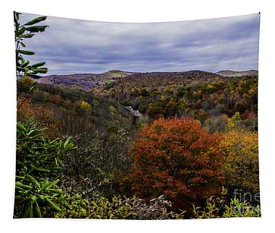 Along The Blue Ridge Parkway Tapestry