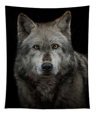 Alpha Male  Tapestry