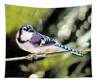 American Blue Jay On Alert Tapestry