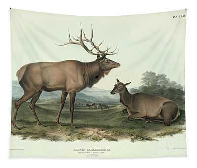 American Elk Tapestry