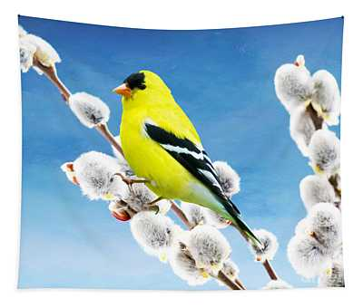 American Goldfinch Perched On Pussy Willow Tapestry
