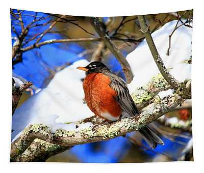 American Robin Tapestry