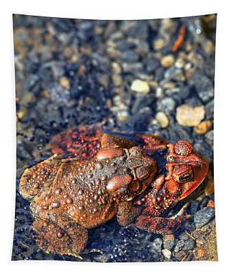 American Toads In Love II Tapestry