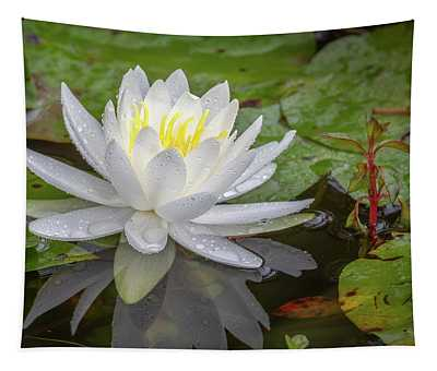 American White Water Lily Tapestry