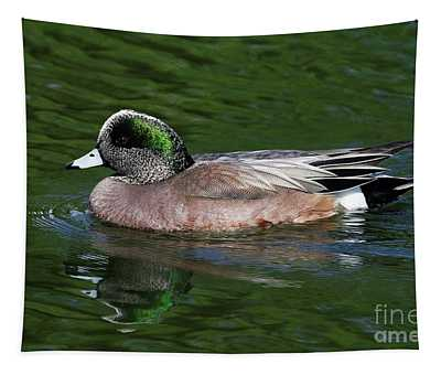 American Wigeon Anas Americana Duck Tapestry