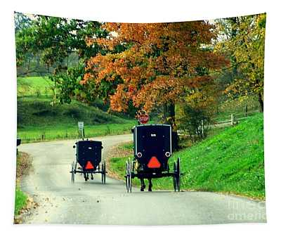 Amish Country In Autumn Ohio Holmes County Tapestry